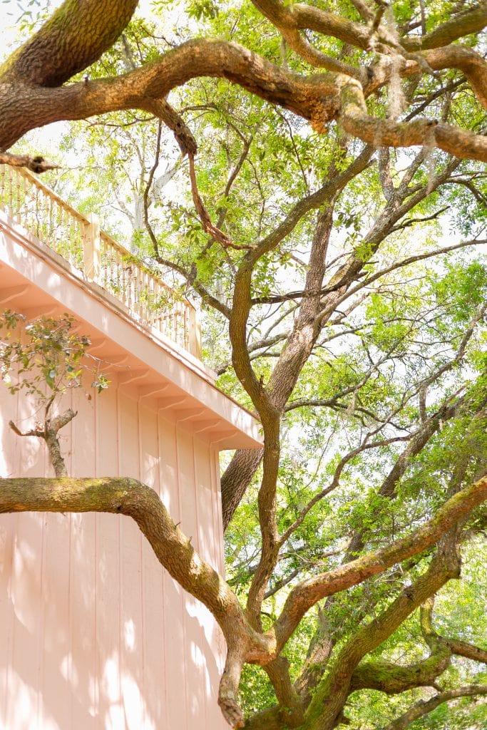 Bolt Farm Treehouse Winter 2021 Cover